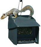 Search : Homestead 3201S Super Stop A Squirrel Wild Bird Feeder